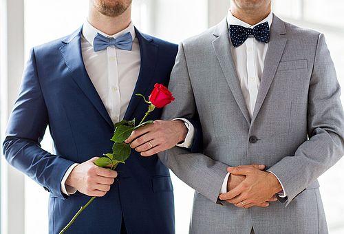 homosexuelle eingetragene partnerschaften